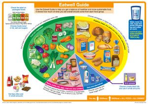 NHS Eatwell Guide 2016